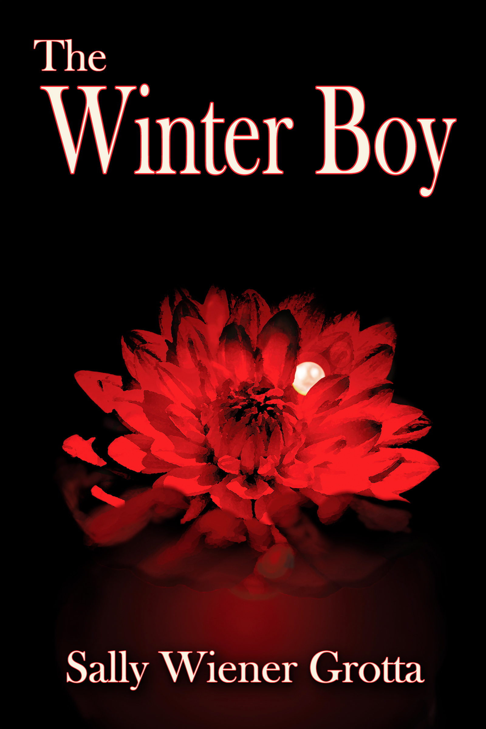 The Winter Boy by Sally Wiener Grotta